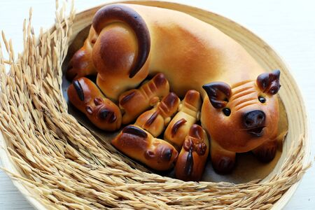 Close up of moon cake with mother pig and piglets shape in bamboo plate with paddy from high view on white background