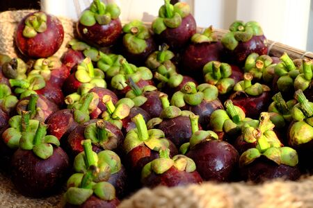 High view many fresh Mangosteens fruit, Vietnamese tropical fruits that nutrition, sweet