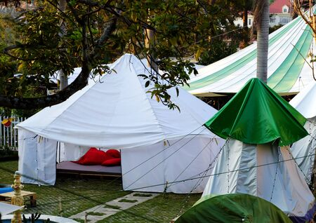 Exciting experience for self travel with white tent, outdoor camp under pine tree in spring at Da Lat city, Vietnam
