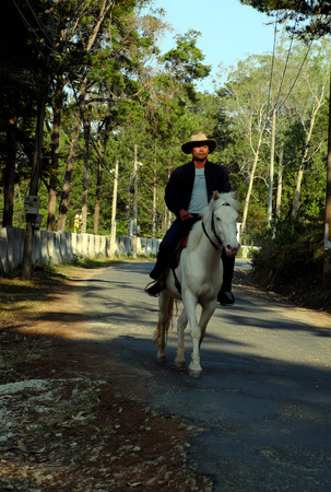 DA LAT, VIET NAM- FEB 24, 2018: Man wear cowboy hat, ride a horse on country road through pine jungle, row of tree along path in sunny evening, VietNam