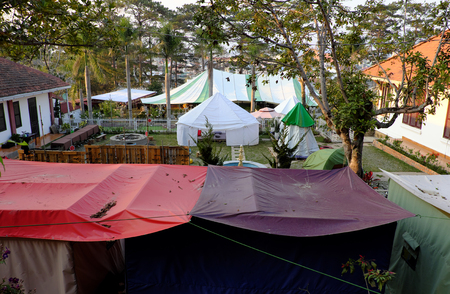 Exciting experience for self travel with tent, hotel with group outdoor camp under pine tree in spring at Da Lat city, Vietnam Editorial