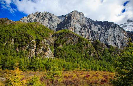 Sichuan Daocheng scenery