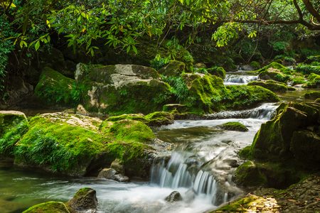 Guizhou Maolan National Nature Reserve scenery, river in the forest Stock fotó