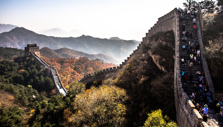 miracle leaf: Great Wall, China