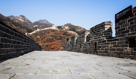 miracle leaf: Great Wall of China Stock Photo