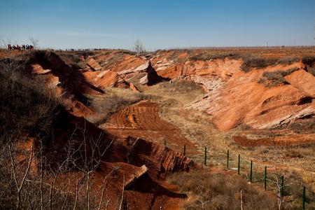 paleontology: Dinosaur petrifaction excavation site Stock Photo