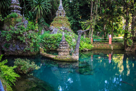 dao: A fish pond outside  the cave invites for meditation int the Chiang Dao temple