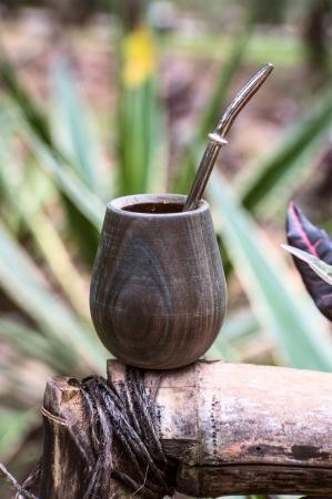 yerba mate: Cerca de la taza de calabaza con derrame de yerba mate y t� de paja de yerba mate es una bebida muy t�pica de Argentina, Uruguay, el sur de Brasil y Paraguay Foto de archivo