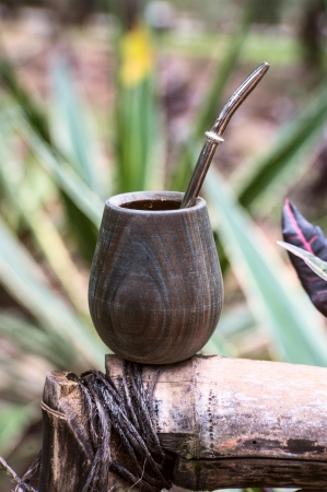 Close up of calabash cup with spill of yerba mate tea and straw  Yerba mate is a very typical drink in Argentina, Uruguay the South of Brazil and Paraguay