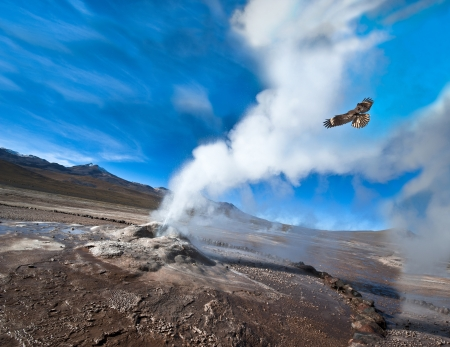 Chile  Valley of Geysers in the Atacama Desert