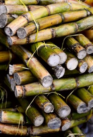 cane sugar: stack of sugar cane sticks  Stock Photo