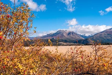 bariloche: Autumn Colors in El Boliche, Bariloche, Patagonia, Argentina