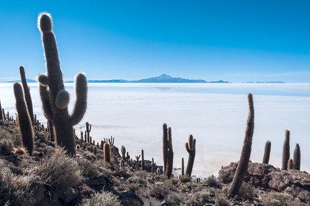 Salt lake - Salar de Uyuni in Bolivia Salar de Uyuni Bolivia is the biggest salt lake of the world and is situated in the southwest of Bolivian on an altitude of 3650 m. Salt mining is an important income of the local people. The surface is about 10.000  photo