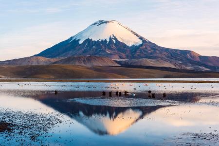 Snow capped Parinacota Volcano reflected in Lake Chungara, Chile Banco de Imagens - 36199231