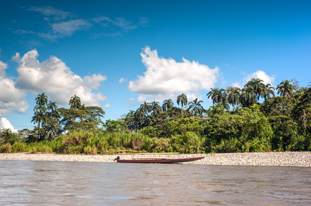 amazon river: Amazonian rainforest. Napo River. Ecuador Stock Photo
