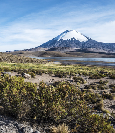 Snow capped Parinacota Volcano, Lauca, Chile photo