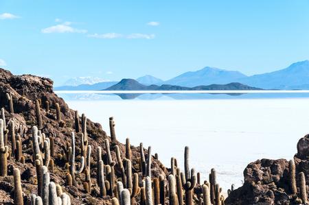 Isla de Pescadores, Salt lake Uyuni in Bolivia photo