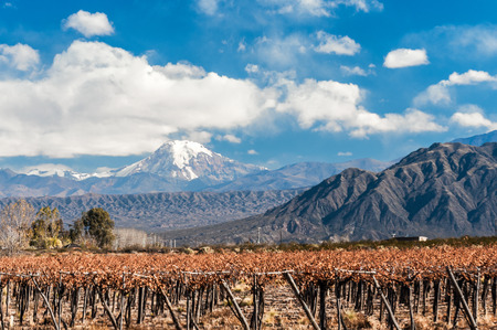 aconcagua: Volcano Aconcagua and Vineyard. Aconcagua is the highest mountain in the Americas at 6,962 m (22,841 ft). It is located in the Andes mountain range, in the Argentine province of Mendoza
