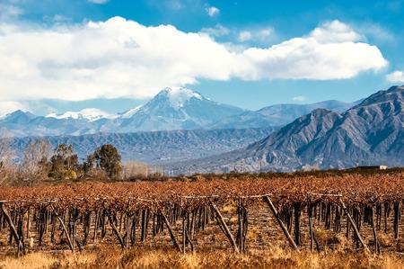 viñedo: Volcán Aconcagua y Martha. Aconcagua es la montaña más alta de las Américas en 6962 m (22.841 pies). Se encuentra ubicado en la cordillera de los Andes, en la provincia argentina de Mendoza