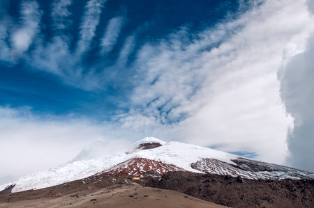 plateau of flowers: Cotopaxi volcano over the plateau, Andean Highlands of Ecuador, South America