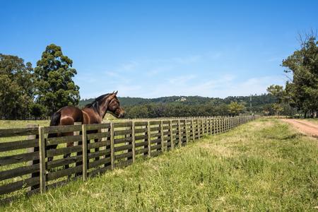 Classic view countryside in Maldonado Department of Uruguay