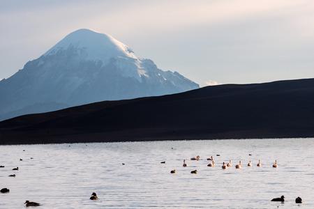 stratovolcano: Snow capped Stratovolcano Sajama under the Lake Chungara, Chile-Bolivia