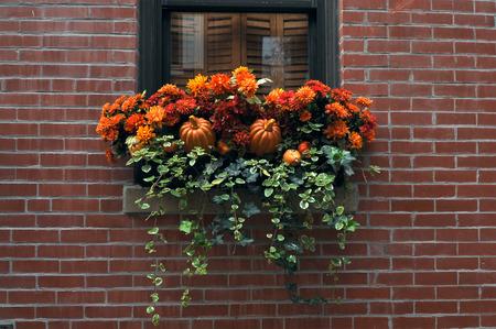 small town life: Halloween in New England, Boston, Massachusetts, USA