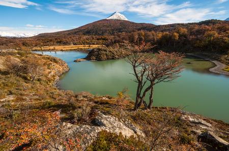 tierra del fuego: Autumn in Patagonia. Tierra del Fuego, Beagle Channel, the Argentina side Stock Photo