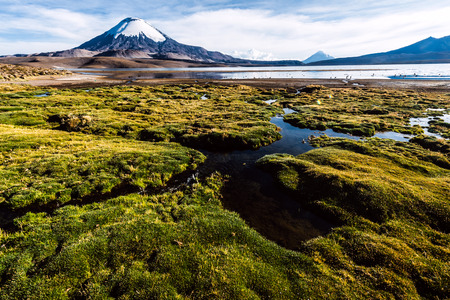 crater highlands: Snow capped Parinacota Volcano reflected in Lake Chungara, Chile Stock Photo