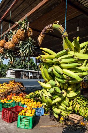 latin america: Banana Bunches, Latin America street market, Ecuador, Guayas province