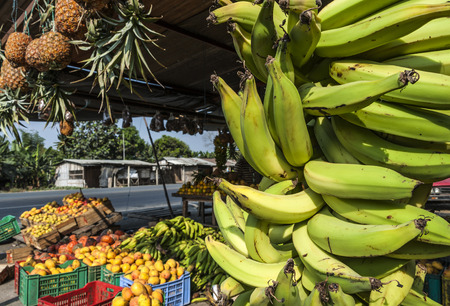 street market: Banana Bunches, Latin America street market, Ecuador, Guayas province