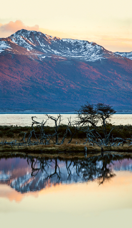 tierra: Autumn in Patagonia. Tierra del Fuego, Beagle Channel and Chilean territory, view from the Argentina side