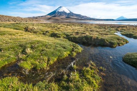 Snow capped Parinacota Volcano over the Lake Chungara, Chile Standard-Bild