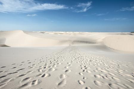 ブラジル、レンソイス Maranhenses 国立公園の青と緑のラグーンと砂丘を介してつながる観光客の痕跡 写真素材