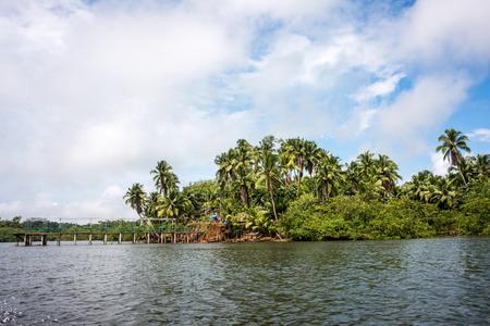 Jungle village in the delta of Rio Verde, San Lorenzo, northern coast of Ecuador, province of Esmeraldas, 8 miles from the Colombian border