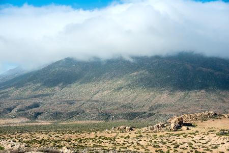 Chilean coast, part of Atacama desert, near Copiapo Standard-Bild