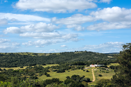 Sunny day in the middle of nowhere in the countryside of Uruguay