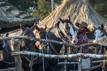 Tacuarembo, Uruguay - March 9, 2018: Gaucho takes care of his horse in the campo. Gaucho is a resident of the South American pampas