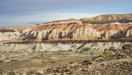 Layered sedimentary rocks in the Colorful valley of the Petrified Forest Natural Reserve, Sarmiento, Patagonia, Chubut, Argentina