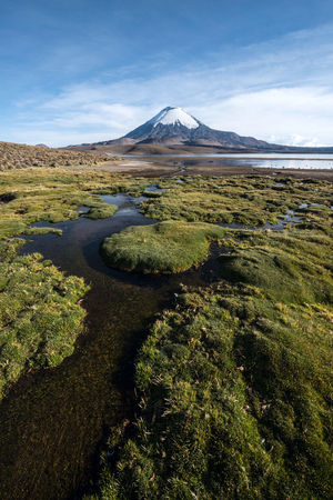 Snow capped Parinacota Volcano reflected in Lake Chungara, Chile Stock Photo