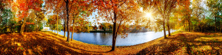 Panorama of an idyllic landscape in autumn