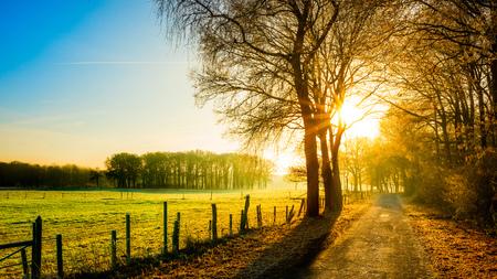 De herfstscène met landelijke weg in het licht van de het toenemen zon