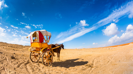 Lonely horse with carriage in the Egyptian desert Stock Photo