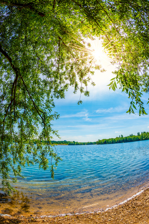 Lake with trees and bright sun on a hot summer day Standard-Bild