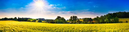 Panorama of a landscape with fields, meadows, trees and sun