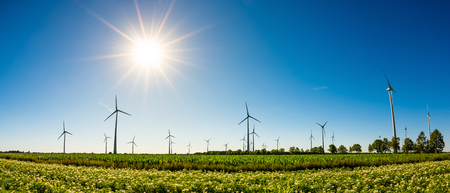 Panorama of a summer landscape with many wind turbines, green fields and bright sun