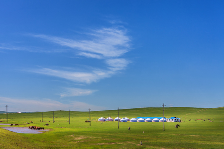 Prairie under blue sky and white clouds Stock Photo