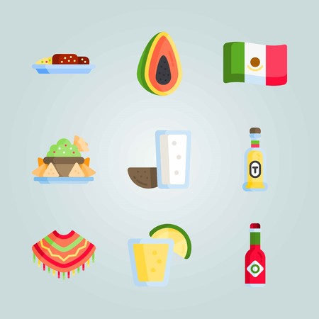 Icon set about Mexican Holiday De Mayo. with pulque, tequila bottle and mole poblano Illustration