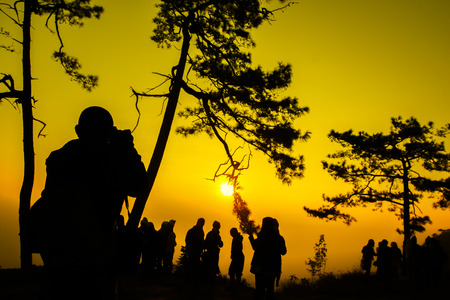 silueta humana: Tiro de la silueta del �rbol de pino y de viaje en la salida del sol de la ma�ana en el Parque Nacional Kradueng Phu, Tailandia.