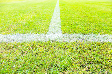 cut the competition: White line in middle or center of football or soccer field.